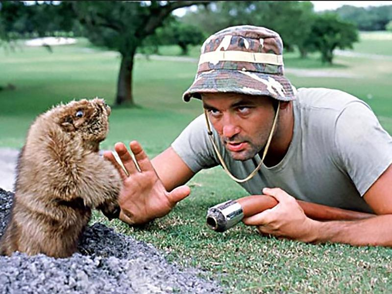 "Bill Murray in ""Caddyshack."""
