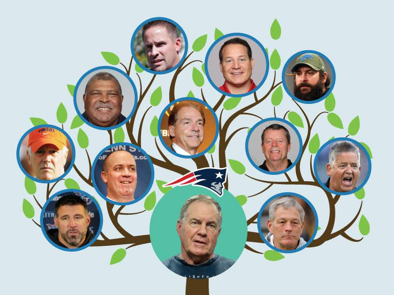 Image result for belichick coaching tree