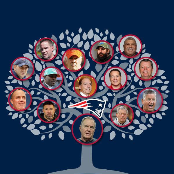 Bill Belichick's Coaching Tree