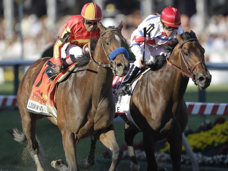 25 Best Racehorse Names of All Time | Stadium Talk