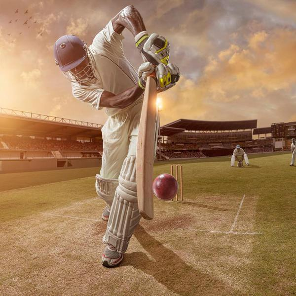 An Introduction to Cricket